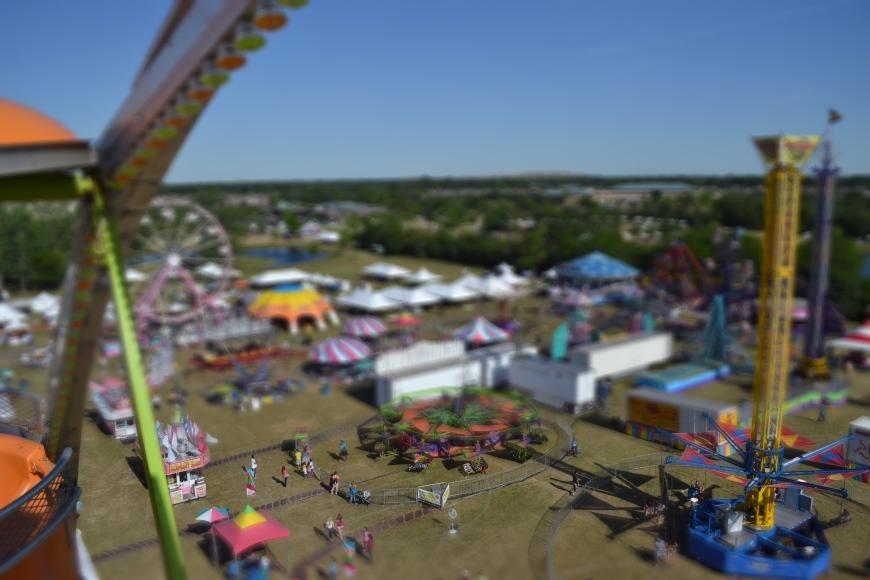 carnival nanny blog