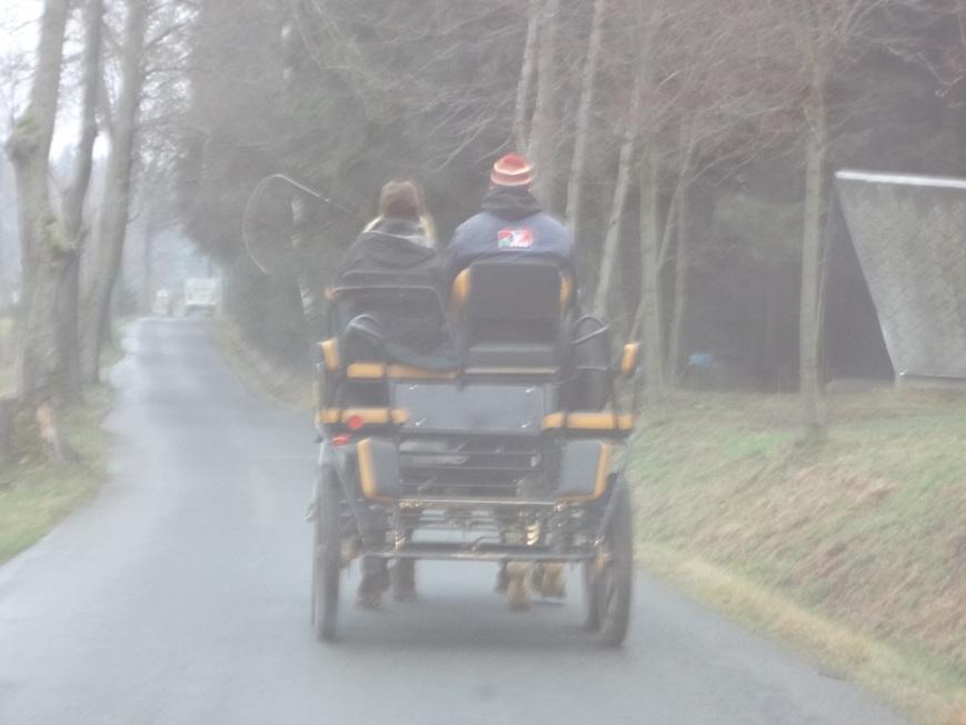 Sometimes I feel like I live in an Amish community.