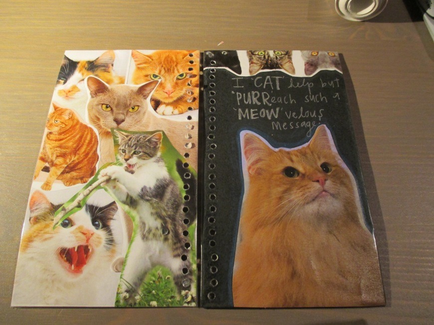 I am making a cat planner for a friend and I need everyone to send me their best cat puns for the inside! hahaha  thanks!