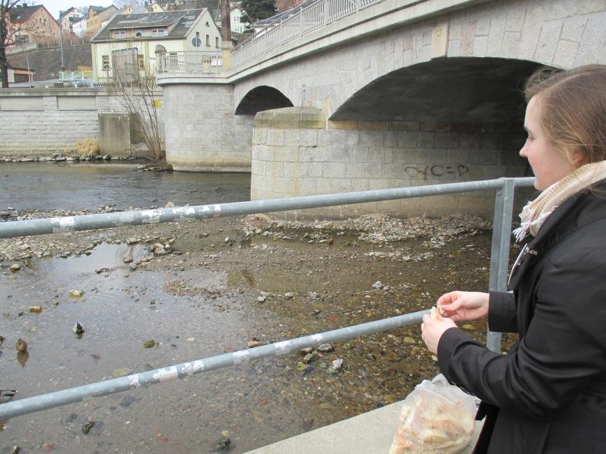 feeding the ducks döner bread