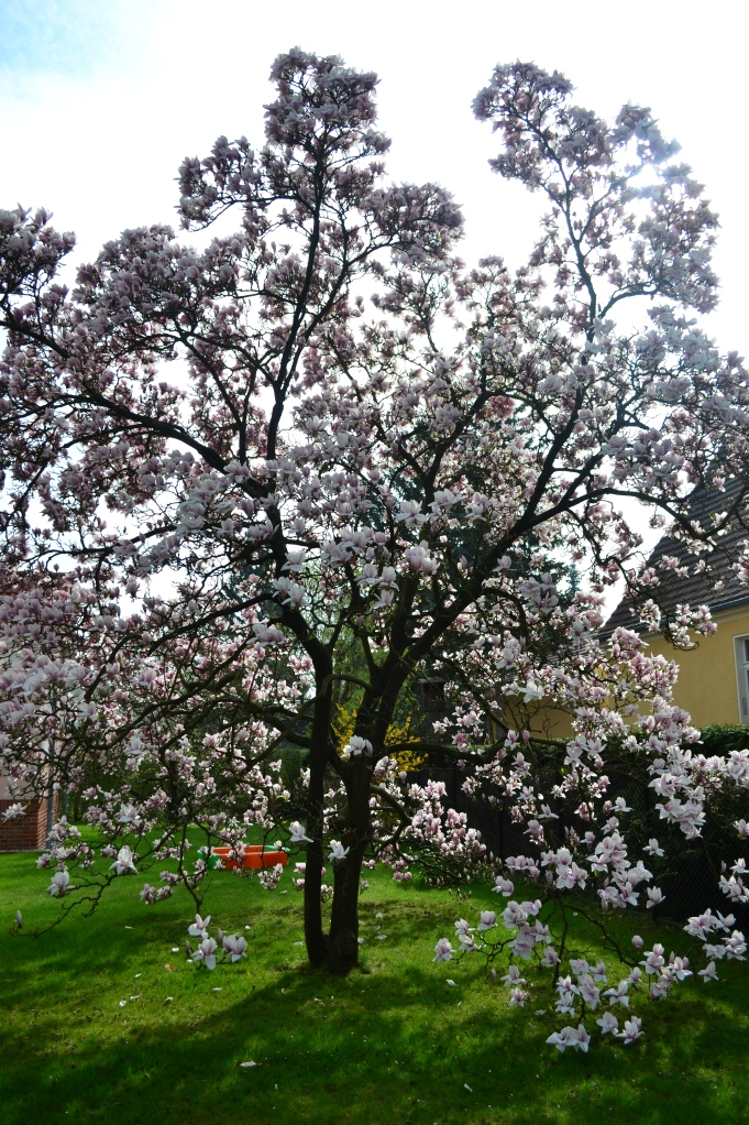 Spring time for Helzer and GERMANY. (sing to the tune from that one song in the producers)
