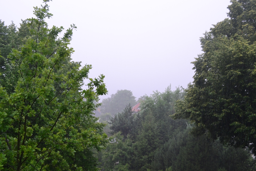 The view from our window on a rainy day. Normally, you can see clear out to the TV Tower!