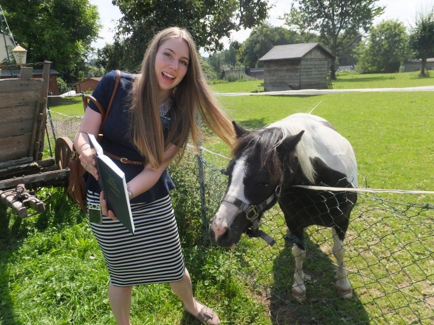 just preachin the word, pony by pony