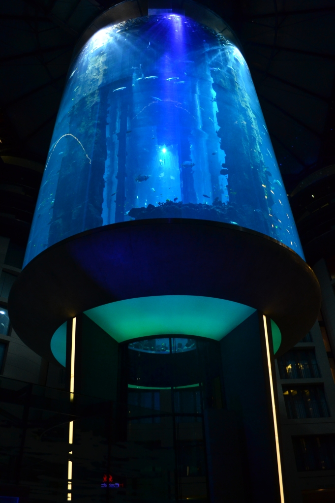 Helena showed me the coolest aquarium in Berlin! One can take an elevator through it. I think this would be perfect for the next mermaid photoshoot Hannah!